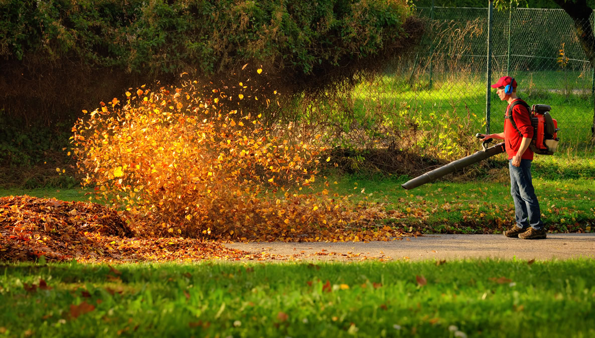 Residential and Commercial Leaf Blowers